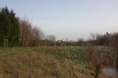 Garten Eden am Teich