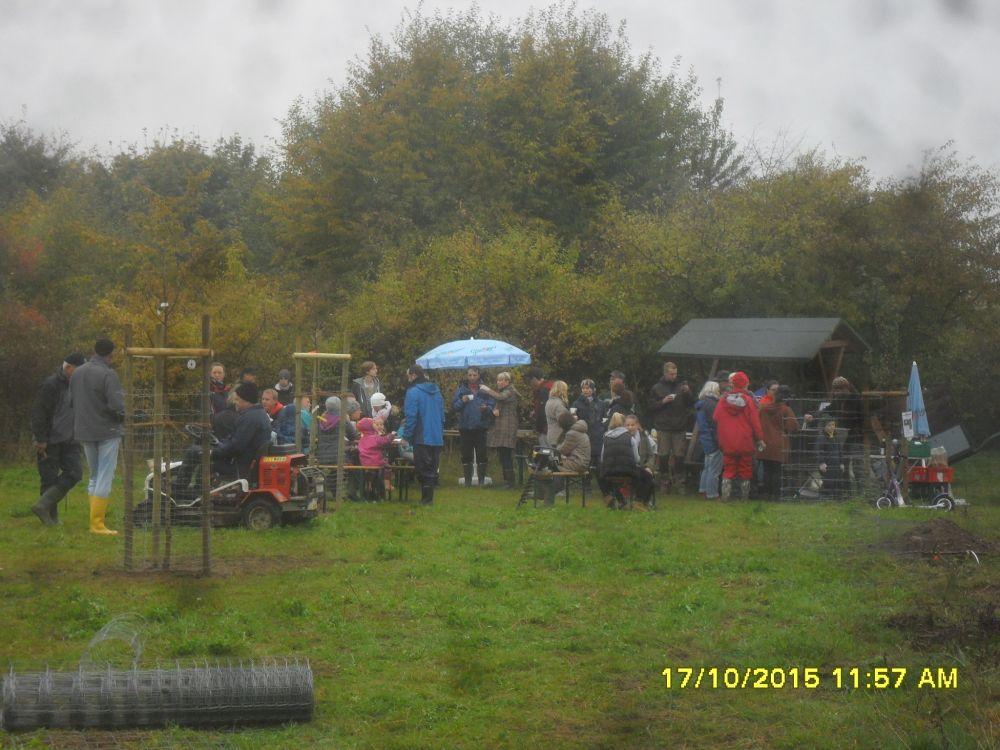 Pflanzfest 2015189