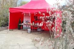 Obstarche Infostand auf den Rhododendrontagen bei Pflanzenhandel Hinrichs GmbH in Kröpelin