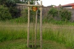 """Streuobstwiese """"Garten Eden"""" Patenbaum"""