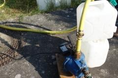 Teichpumpe fördert Wasser