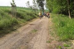 Baumreihe Möhlenbäk, Wanderweg zwischen Reddelich und Brodhagen
