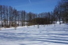 Streuobstwiese Ellernbruch in Reddelich