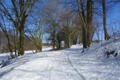 Wanderweg zwischen Reddelich und Brodhagen