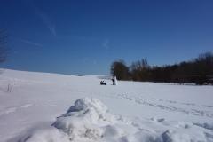 Schneemann in Reddelich