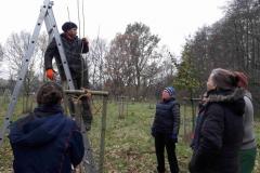 Ingmar eräutert den Pflanzsschnitt eines Jungbaumes