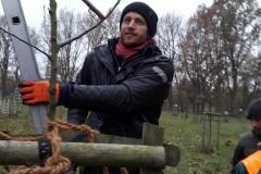 Ingmar beim Erziehungsschnitt der Obstbäume im 2. Standjahr