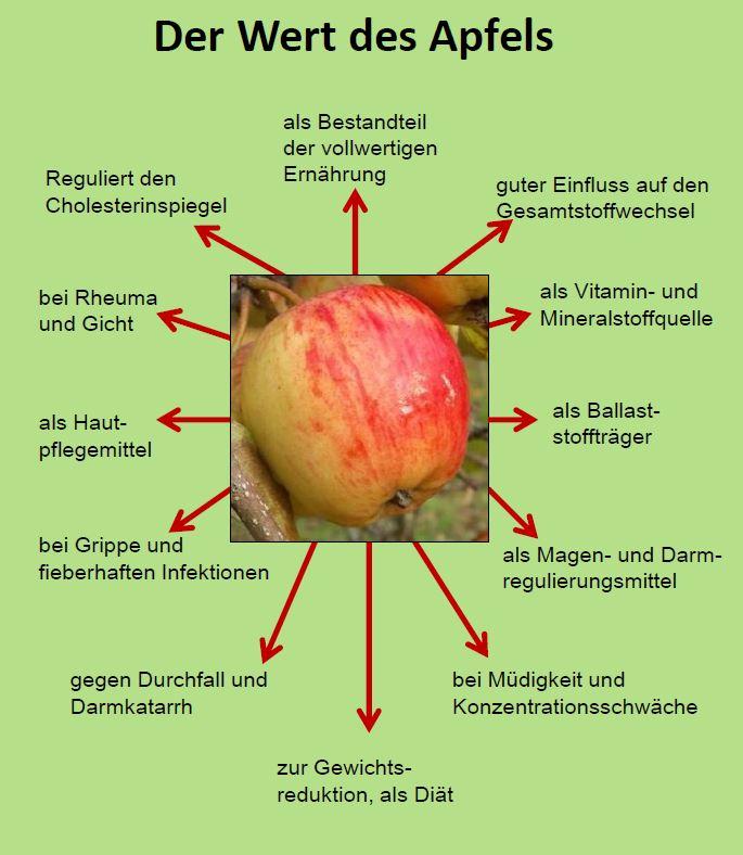 Wie Gesund Sind Apfel Obstarche Reddelich